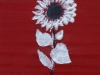 140713 - 3 Sunflower white