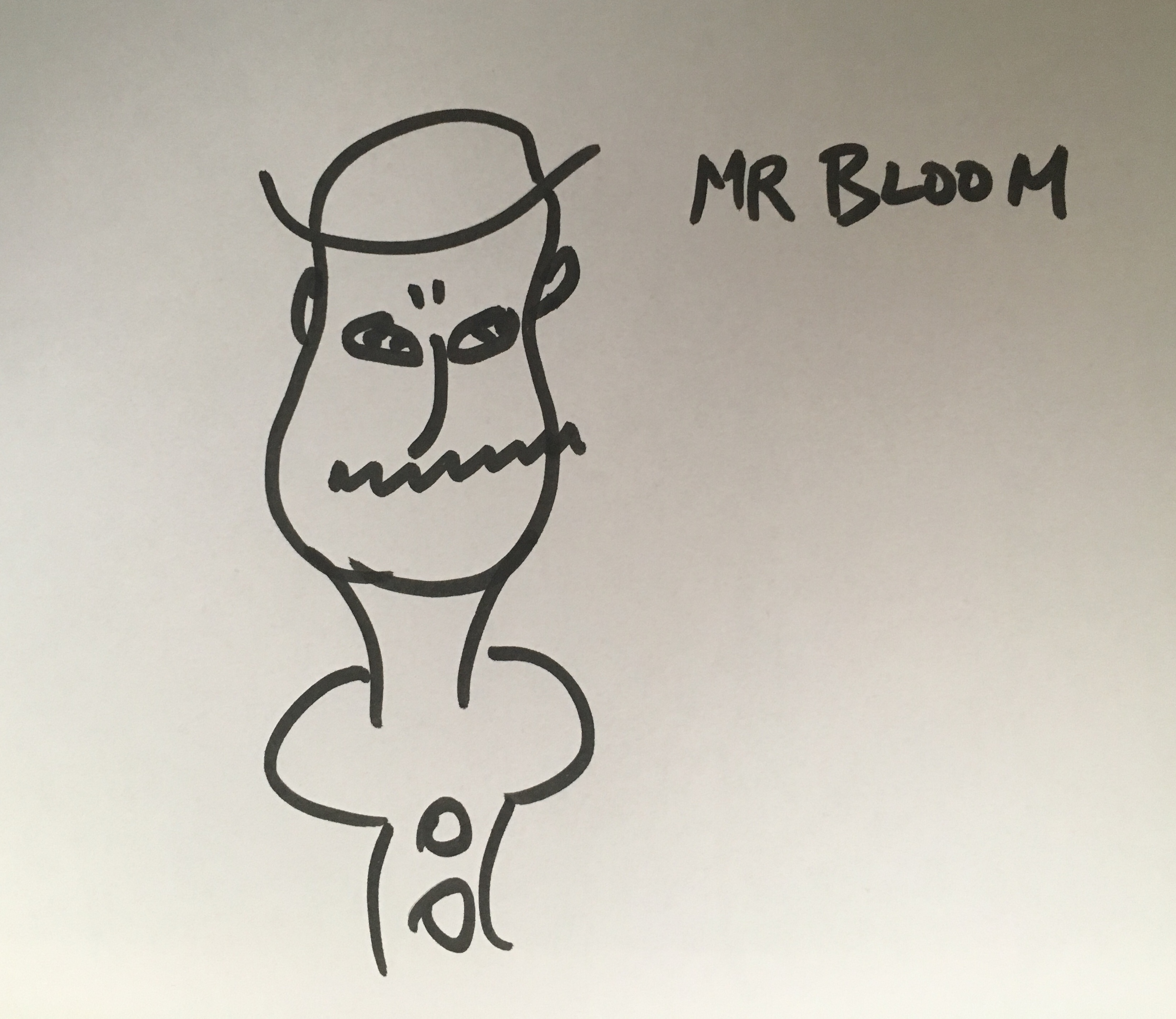 Mr Bloom